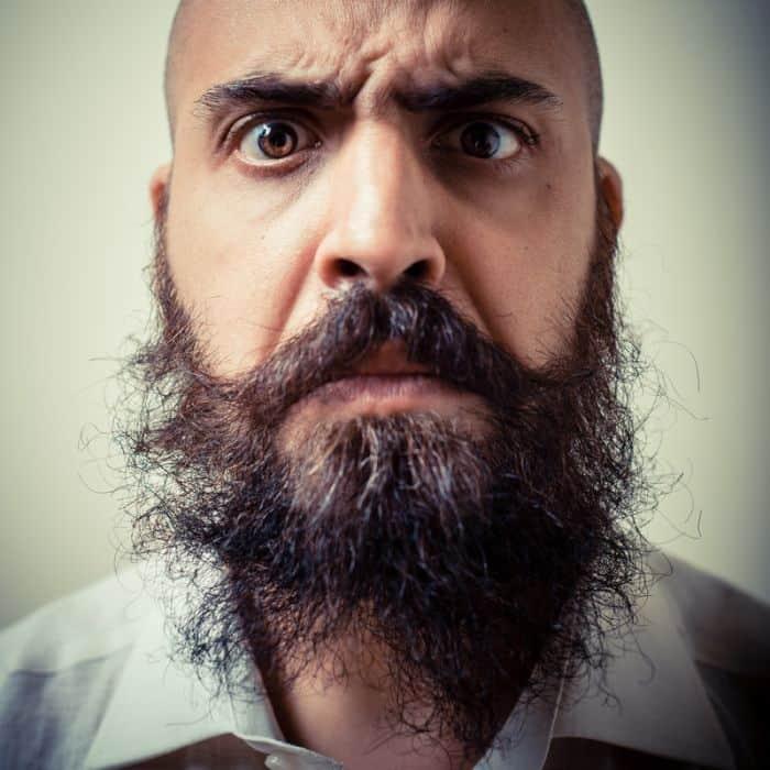 Best Beard Straighteners (Incl. Comb & Brush) - Buyers Guide